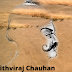 adventurous story in 150-200 words with moral-Prithviraj Chauhan