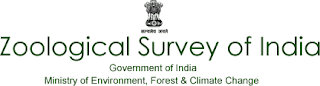 MoEF Recruitment for Library & Information Asst & Office Superintendent Posts 2019