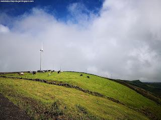 PORTUGAL / Views, Ilha Terceira, Açores, Portugal