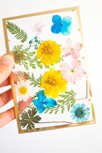 How to Make Beautiful Pressed Flower Floating Glass Frames (Perfect for a birthday or Mother's Day craft)