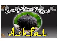 Lowongan Kerja Admin di Ashfal Group - Semarang