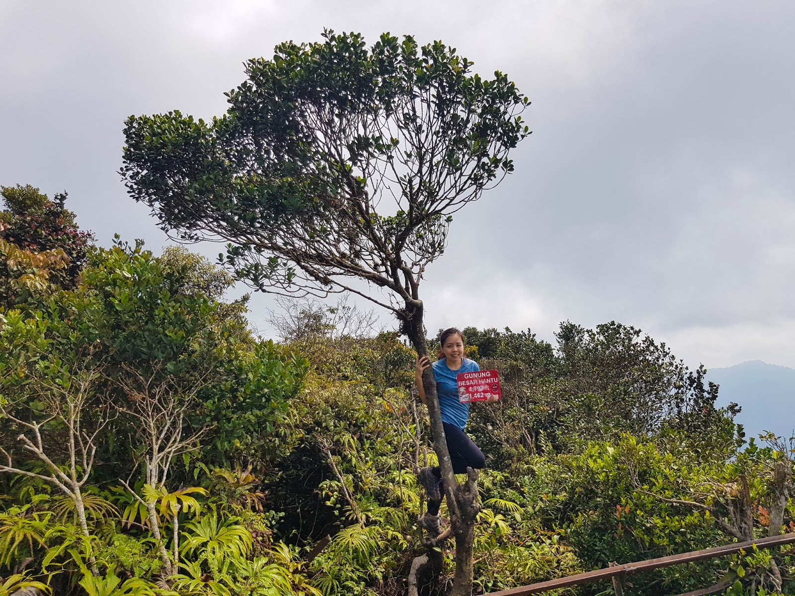 Catchingtravels Gunung Besar Hantu Five Stubborn Ghosts At The Top Of Negeri Sembilan S Highest Peak