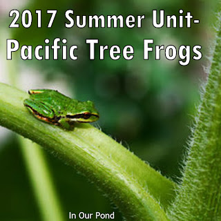 Tree Frogs Summer Unit from In Our Pond