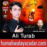 http://www.humaliwalayazadar.com/2016/10/ali-turab-nohay-2017.html