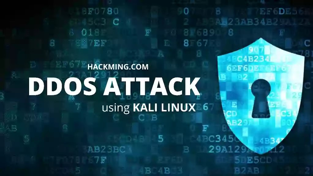 How to do DDoS Attack in Kali Linux