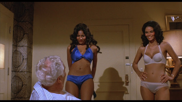 pam grier and another woman in the underwear