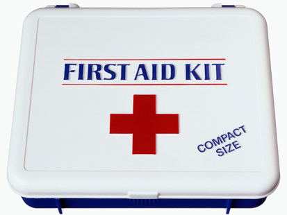 CLASS 10 -- ESSAY: The importance of first Aid