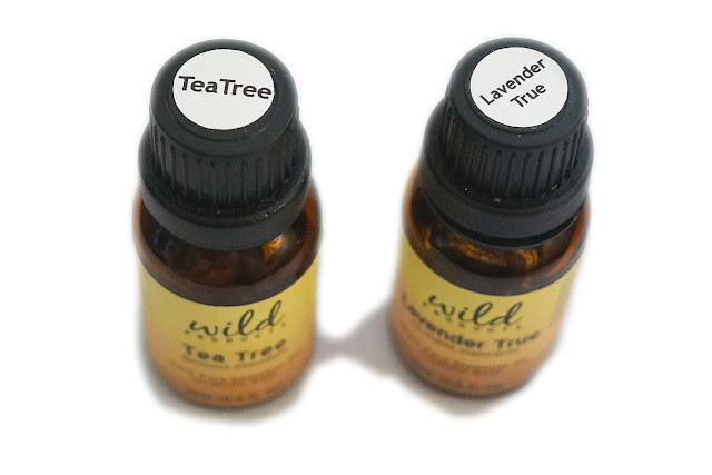 Wild Products Essential Oil | Lavender True (Lavandula Angustifolia) and Tea Tree (Melaleuca Alternifolia)
