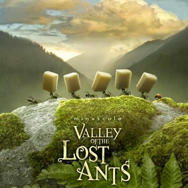 ดูการ์ตูน Minuscule Valley of the Lost Ants หุบเขาจิ๋วของเจ้ามด