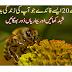 20 amazing health benefits of honey