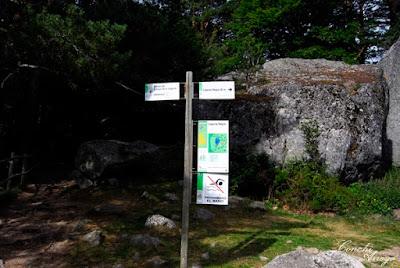Todo el parque está bien señalizado por si se va por libre, paneles informativos con mapas y todo tipo de detalles sobre flora y fauna en el entorno.