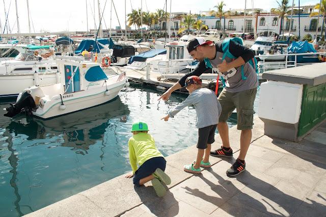 Puerto Mogán a průzračně čistý přístav s rybami