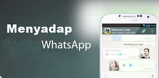 sadap whatsapp online