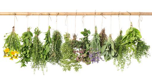 hogyan készítsünk gyógynövények főzetét a pikkelysömörhöz