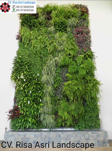 jasa tukang green wall gresik , jasa tukang vertical garden