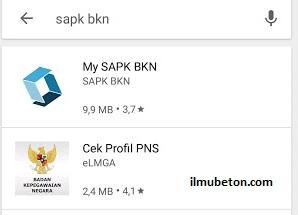 aplikasi My SAPK BKN