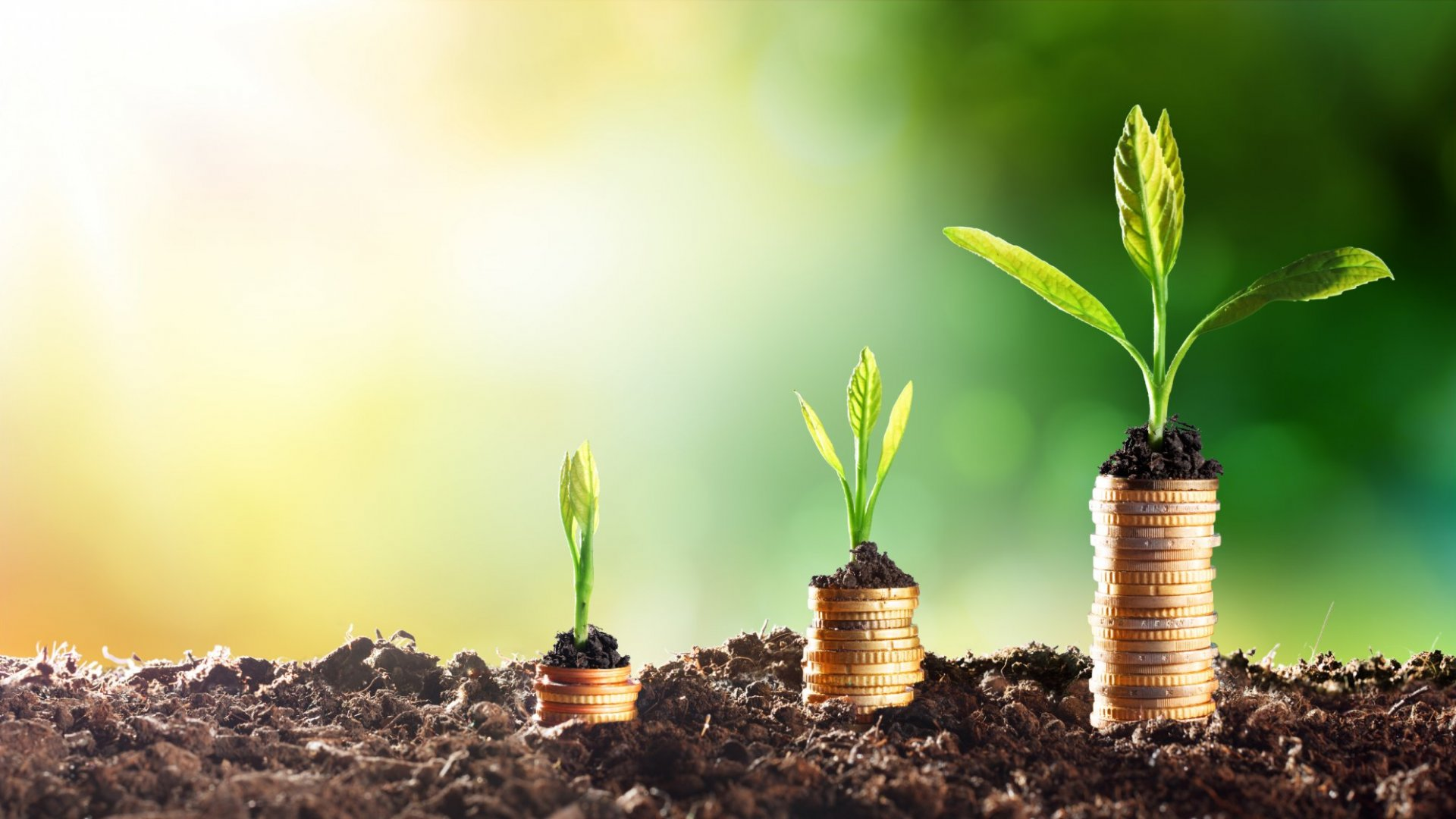 4 Simple Ways to Grow Your Business