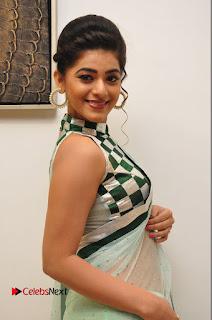 Actress Yamini Bhaskar Pictures in Saree at Pelli Choopulu Audio Launch  0023