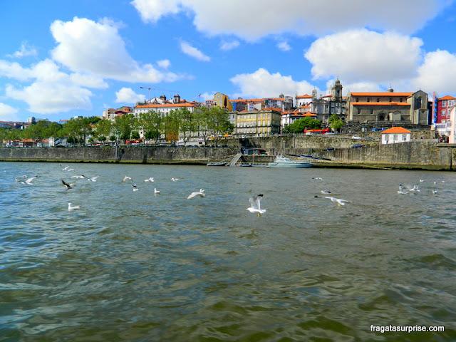 Passeio de barco pelo Rio Douro na Cidade do Porto