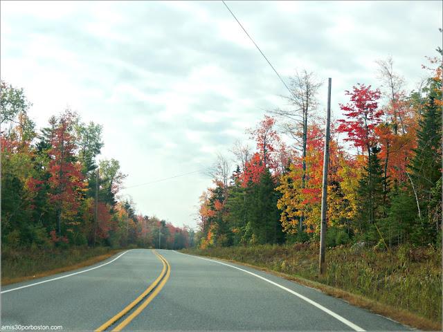 Carretera desde Lakeside Cedar Cabins al Parque Nacional de Acadia en Maine