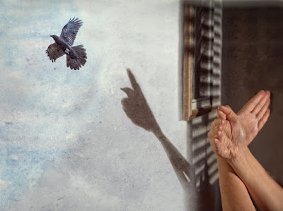 A Bird In The Hand by Sara Harley