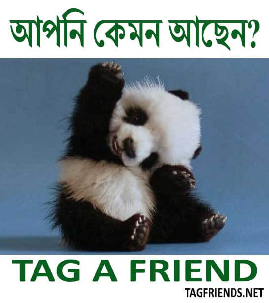 How To Say How Are You In BENGALI Language