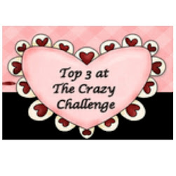 Top 3 at the Crazy Challenge 07/05/12