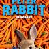 Sinopsis Film Peter Rabbit (2018) -  Kisah Seru Kelinci Nakal