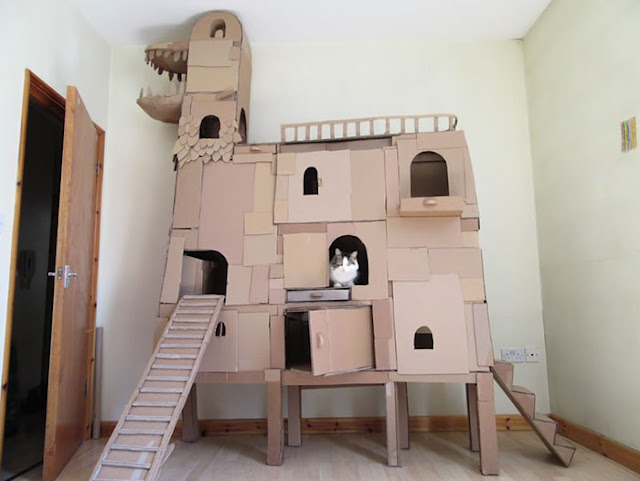 """""""I designed this new cardboard tower with moving parts, giving Dinni alternative movement around the tower"""""""