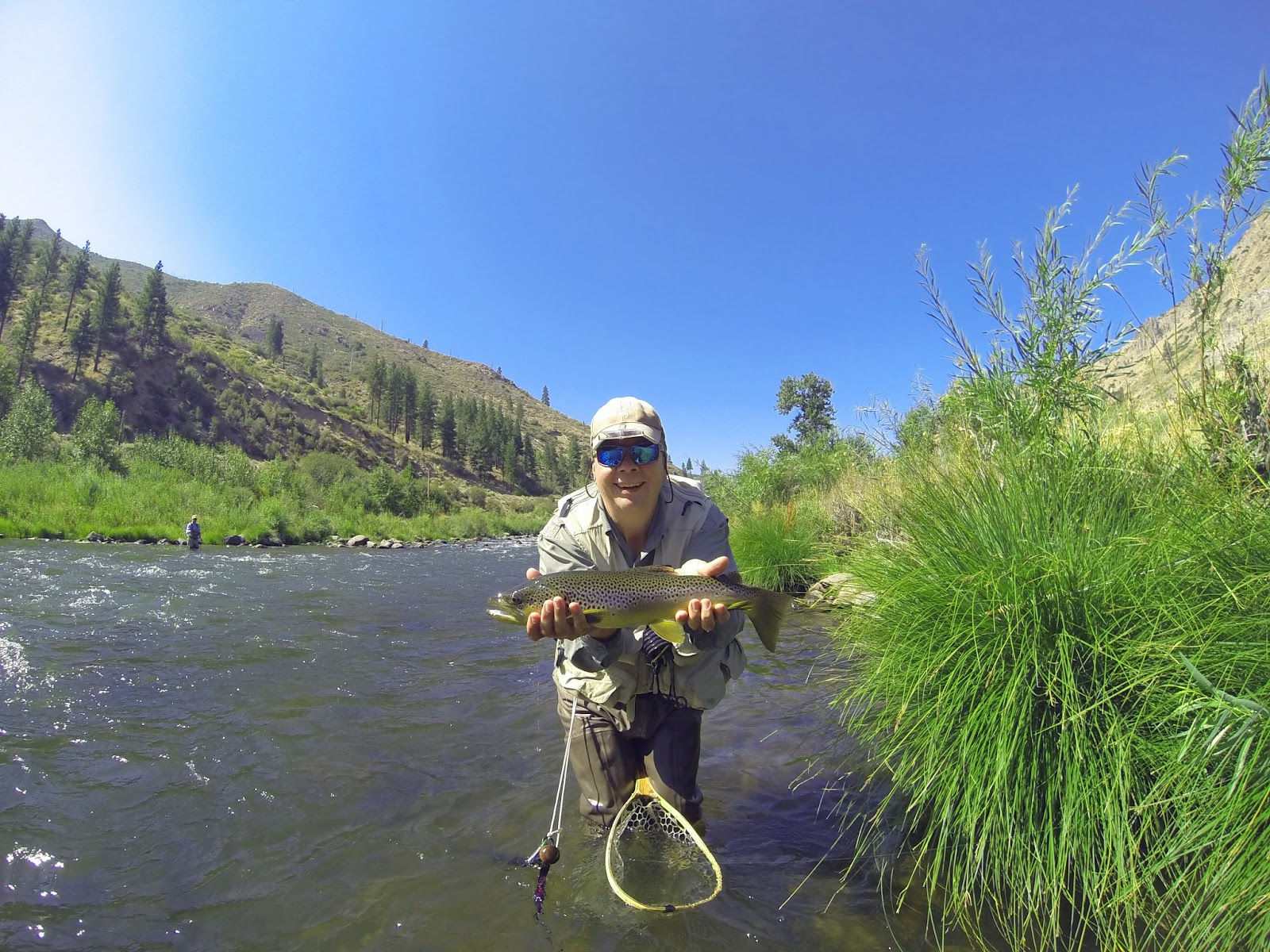 Jon baiocchi fly fishing news north fork yuba river for Truckee river fishing report