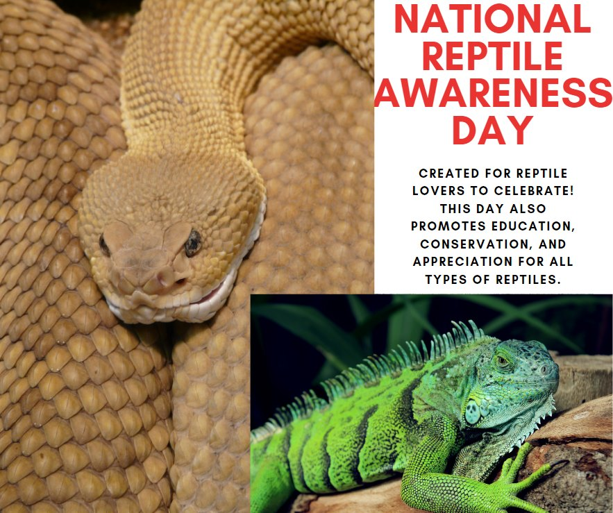National Reptile Awareness Day Wishes Sweet Images