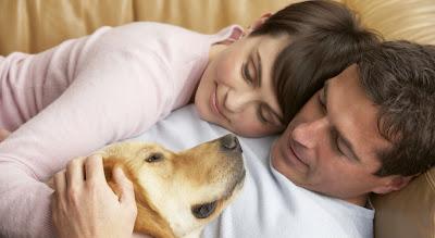 Αποτέλεσμα εικόνας για σκυλος και ανθρωποι