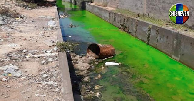 Extraña sustancia verde se derrama en Cardón y contamina las playas cercanas