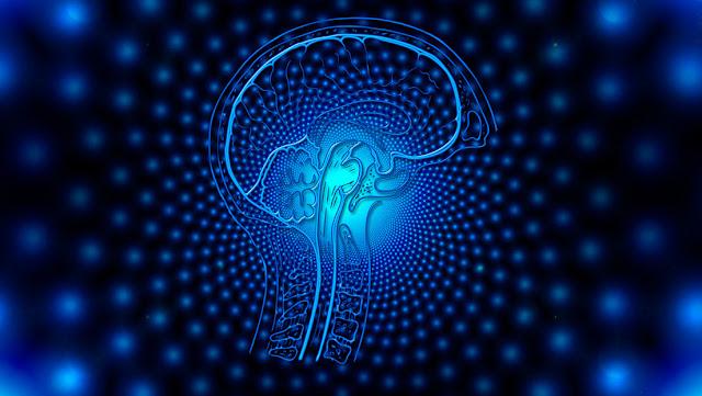 Un sistema de Inteligencia Artificial plasma señales cerebrales en texto con hasta un 97 % de precisión