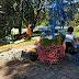 Дніпровські зеленбудівці готуються до квіткової виставки