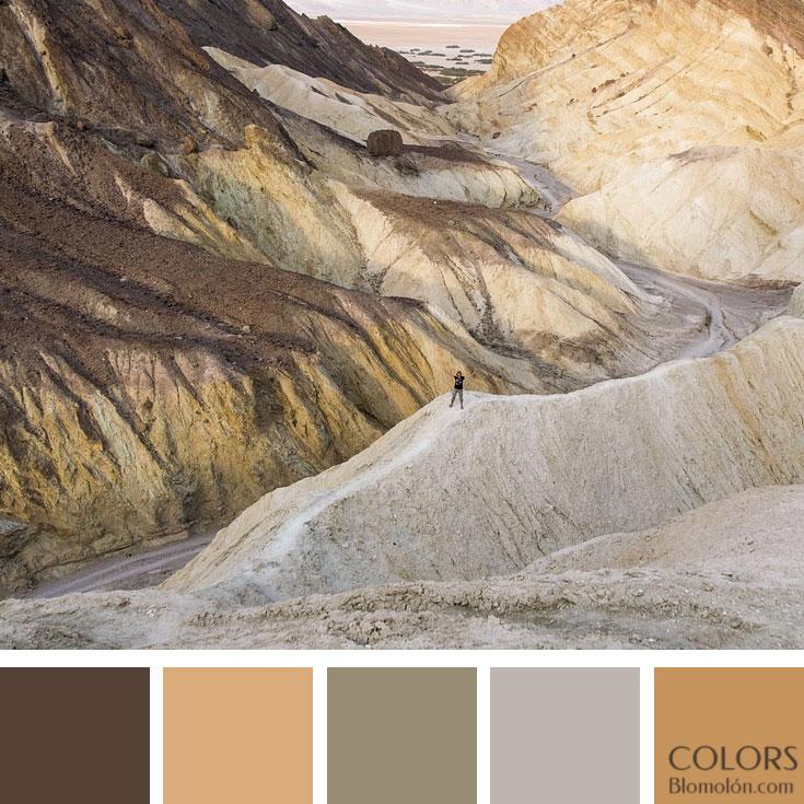 variedad_en_color_paletas_de_colores_107