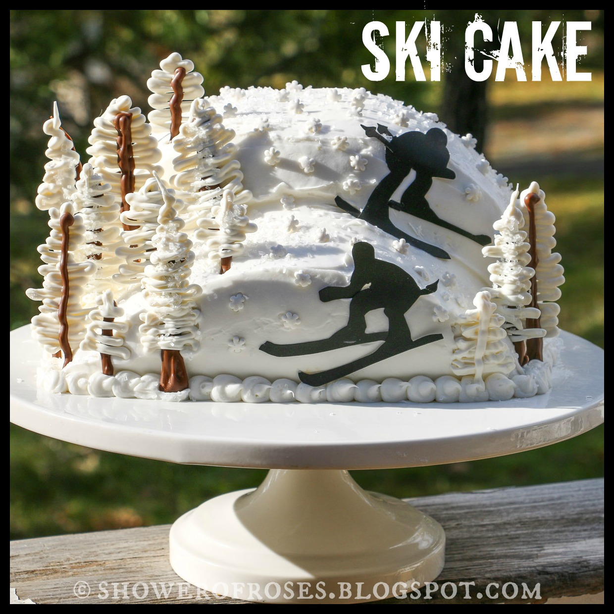 Shower Of Roses Snowy Mountain Ski Resort Birthday Cake