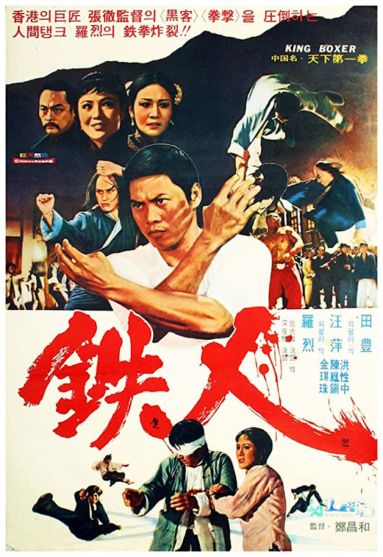movie poster with Chinese characters and a hero in kung fu pose