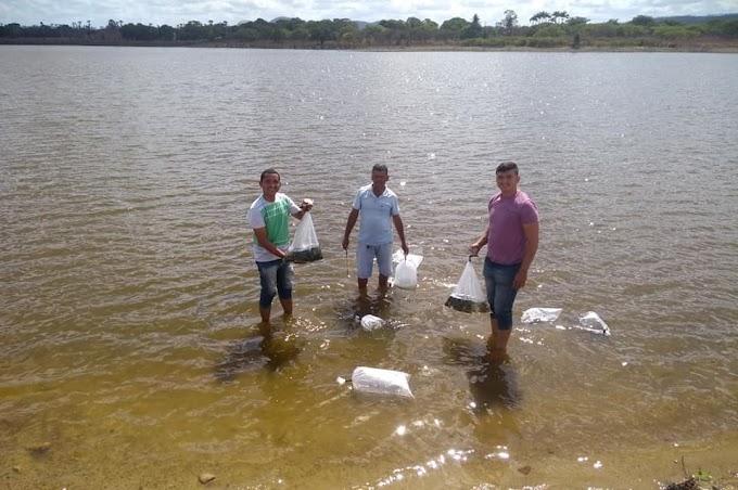 Sec. de agricultura de Senador Sá aplica ação de peixamento junto com sec. desenvolvimento agrário do Estado