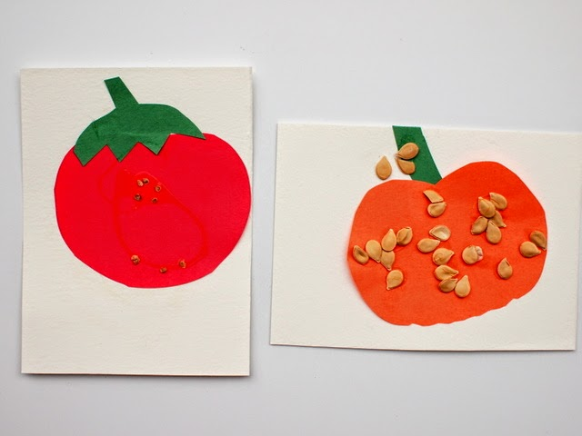 kid science STEM activity-   compare the sizes of seeds