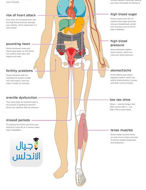 أعضاء في جسمك تستطيع العيش من دونها! Members of your body can live without it