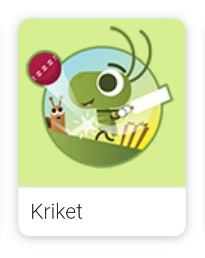 Game Kriket Google