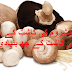 How to Grow Mushrooms & its seasons in Pakistan - Urdu Guide