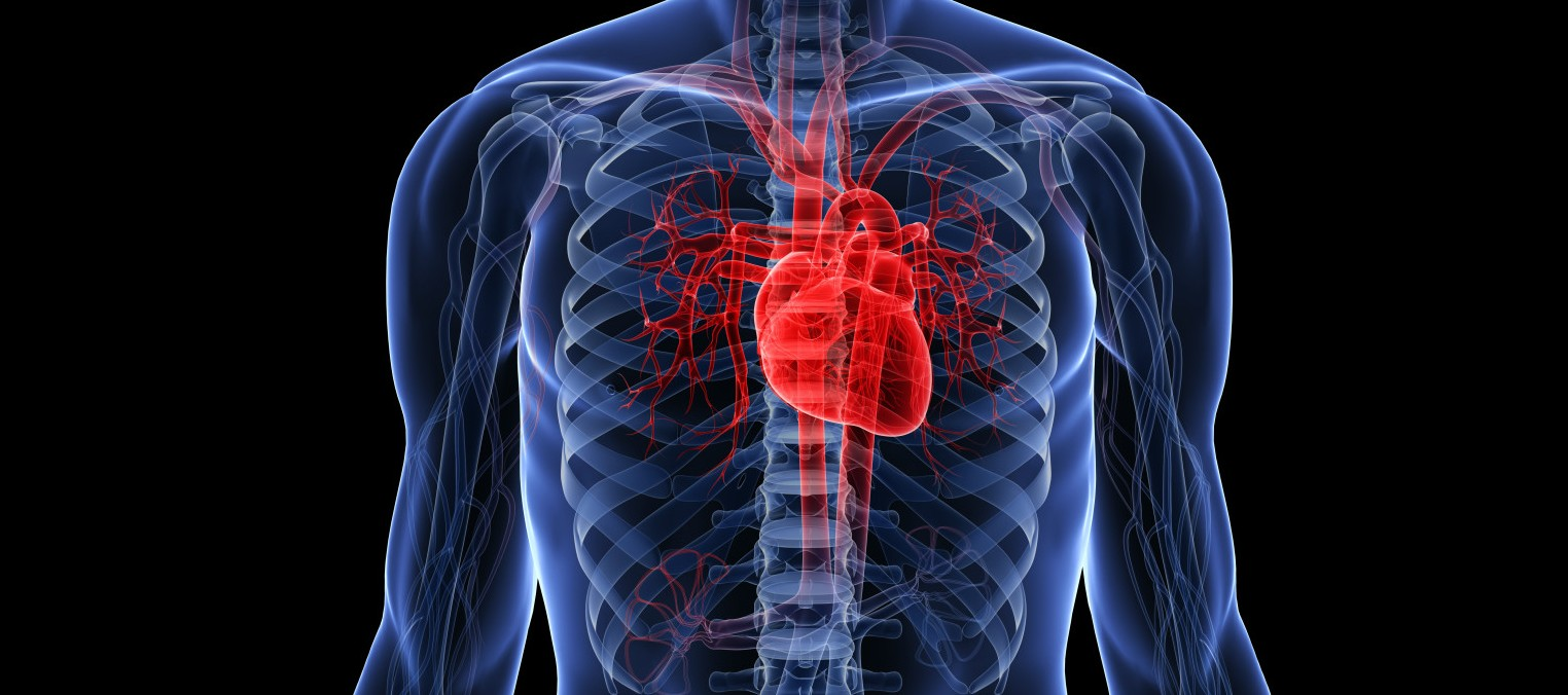 Heart Bypass Surgery Some Important Facts With My Fm Building A