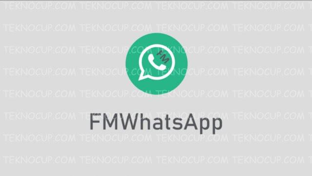 FMWA (FM Whatsapp)