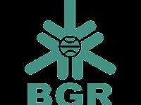 PT Bhanda Ghara Reksa (Persero) - Penerimaan Untuk Posisi Staff, Manager BGR Indonesia July 2019