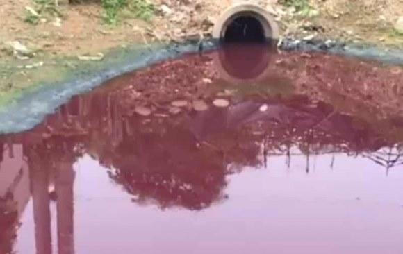 Đầu độc bằng thực phẩm, bằng ô nhiễm – Trung Quốc không bằng Việt gian bảo kê hàng TQ về VN