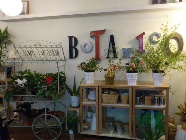 cafe botanico zaragoza