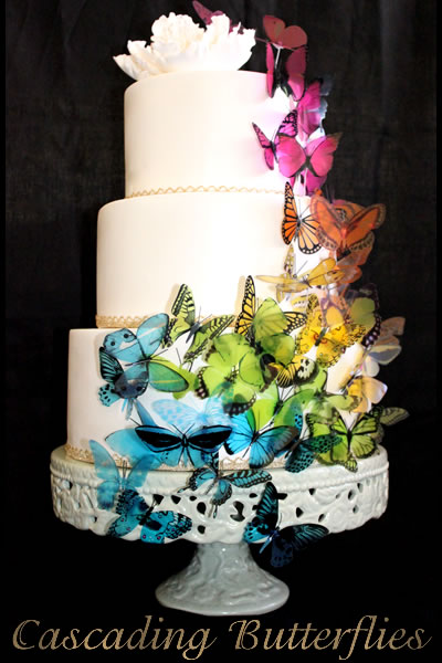 Black Frifay Wedding Cakes Pictures: Rainbow Butterly Wedding Cakes