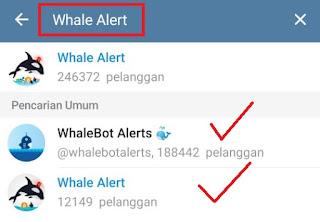 Cara Melihat Aktivitas Trading Whales (Bandar) CryptoCurrency Menggunakan Bot Telegram